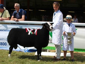 Vicky Grinnall  Beech Hay Asset  Breed Champ